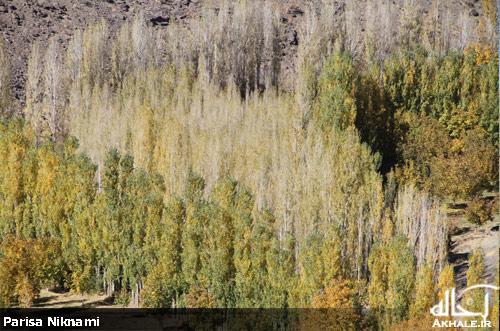 عکس های زیبا از طبیعت پاییز